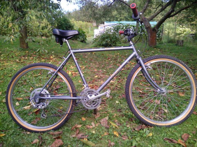 Raleigh Maverick 1986 #27